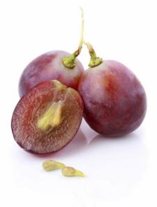 Vigne rouge biologique et pépins